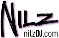 LogoNilz